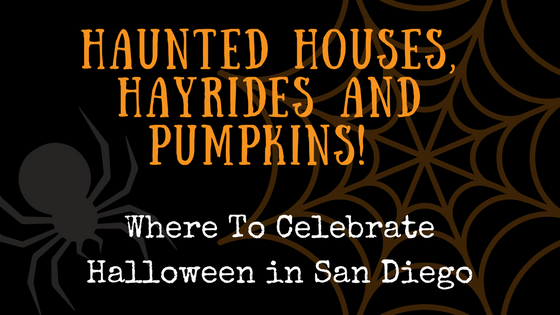 if its october you can rest assured that pumpkin spiced everything is back and halloween in right around the corner did you know that san diego is home - Where To Celebrate Halloween